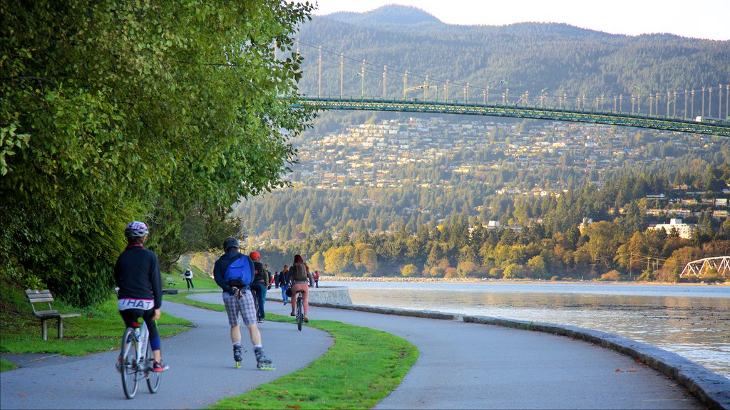 Stanley Park featuring cycling, a river or creek and a bridge