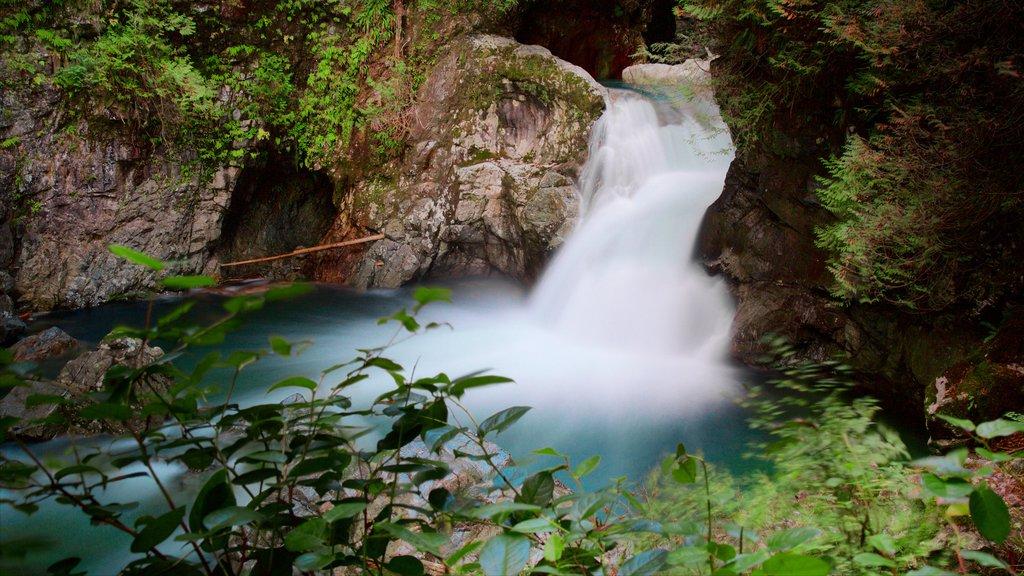 Vancouver showing a cascade