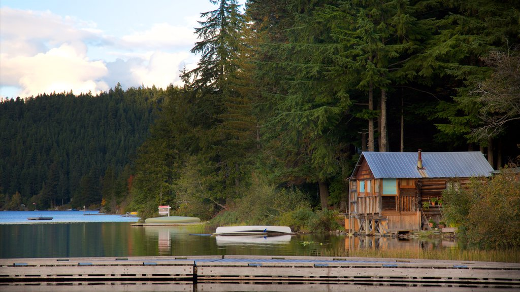 Whistler Ski Area which includes forests, a lake or waterhole and a house