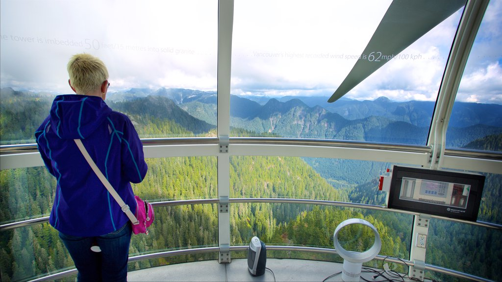 Grouse Mountain featuring mountains, views and forest scenes