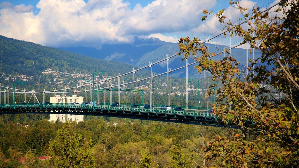 Stanley Park showing a bridge, mountains and a park