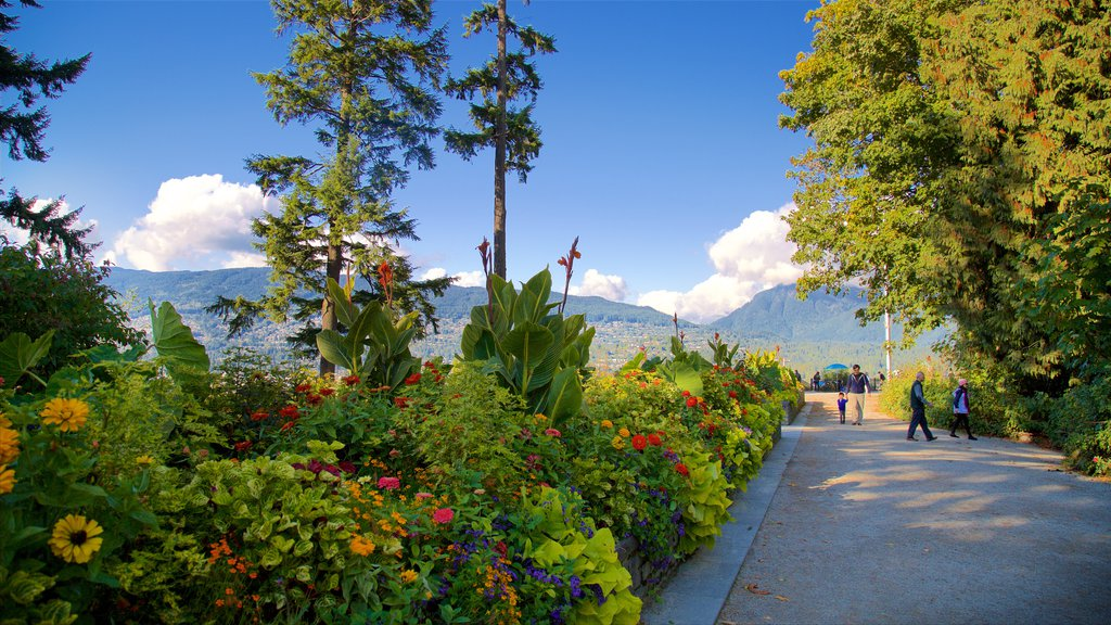 Stanley Park showing a garden