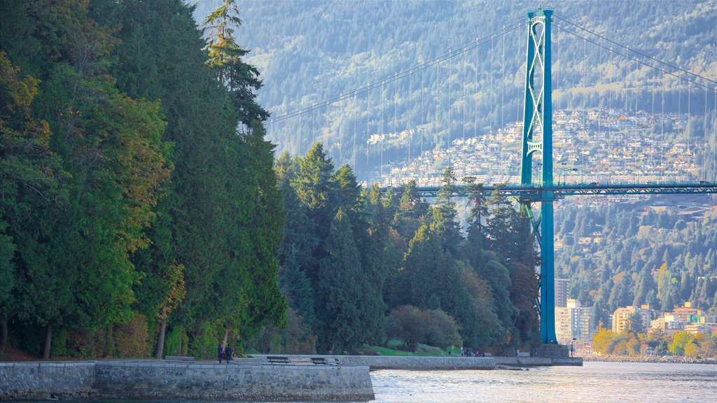 Stanley Park which includes a bridge, a bay or harbor and a park