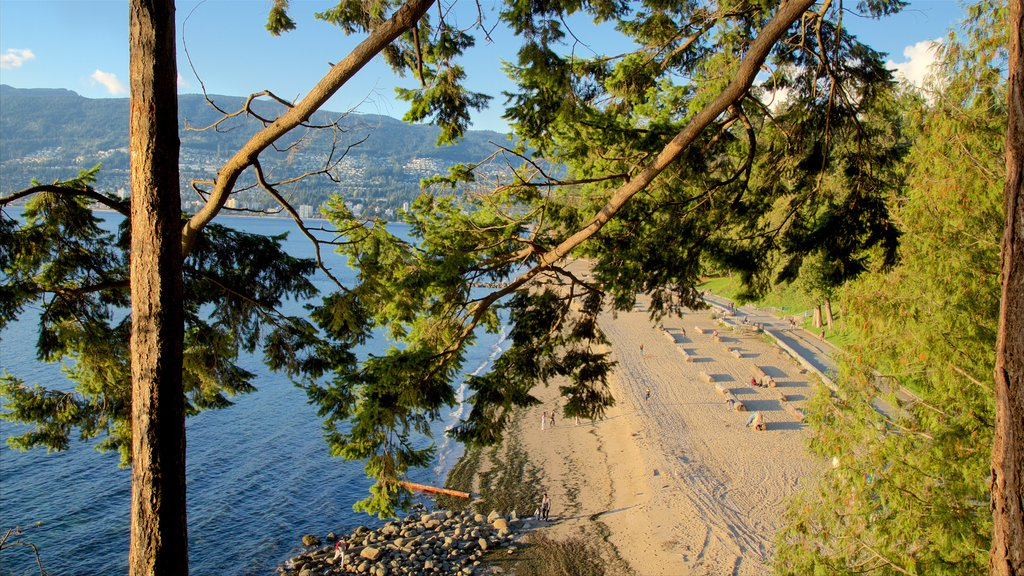 Stanley Park which includes a bay or harbor and a sandy beach
