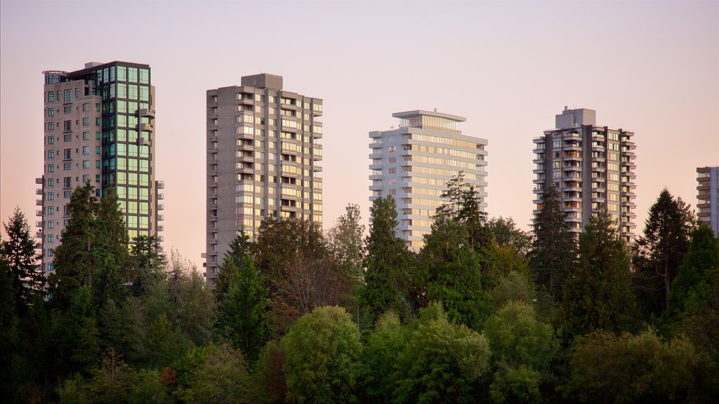 Stanley Park showing a sunset, a high rise building and a garden