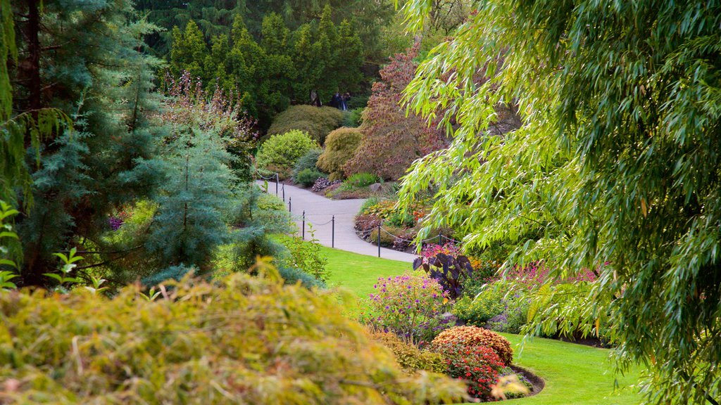 Queen Elizabeth Park which includes a park