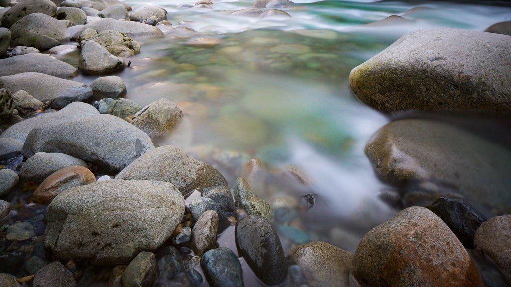 Parque Lynn Canyon mostrando un río o arroyo