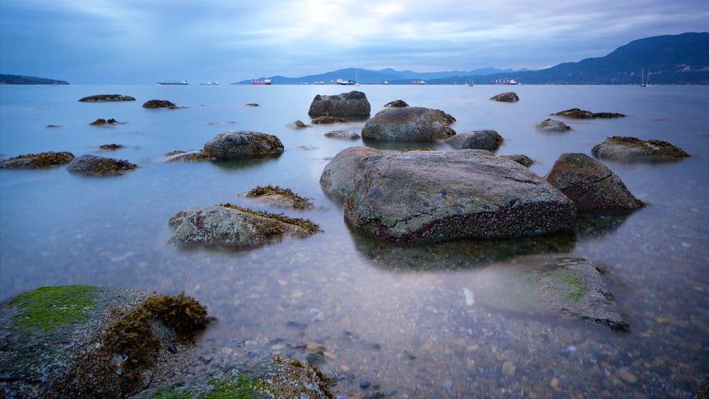 Playa Kitsilano mostrando vistas generales de la costa y una bahía o puerto