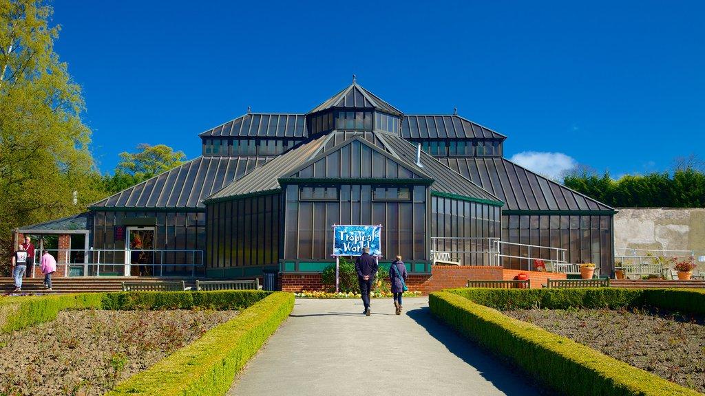 Tropical World mostrando un parque y también un pequeño grupo de personas