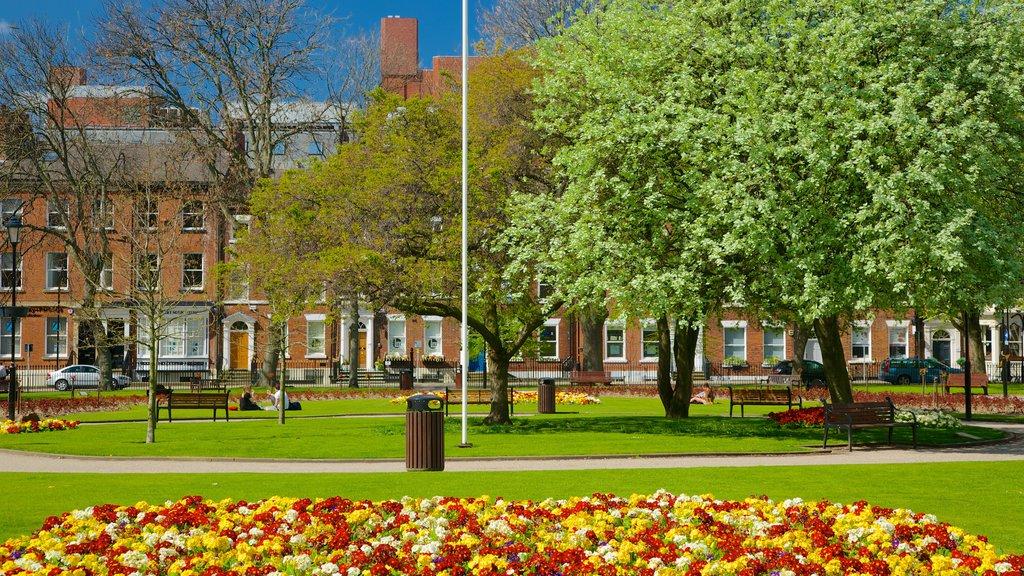 Leeds mostrando un parque