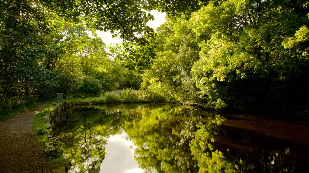Rivelin Valley Nature Trail featuring a lake or waterhole and a park