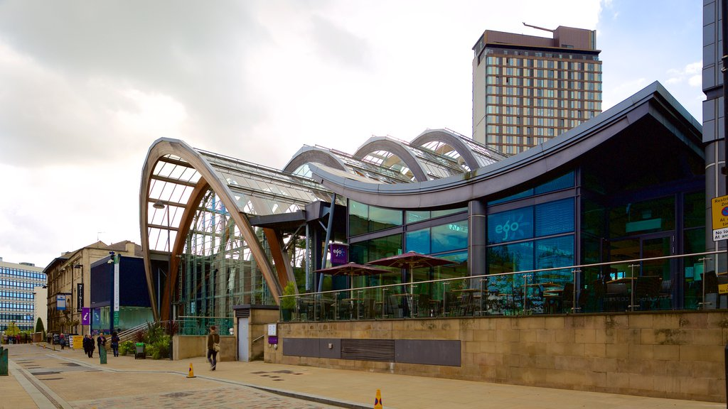 Sheffield Winter Garden showing modern architecture and a garden