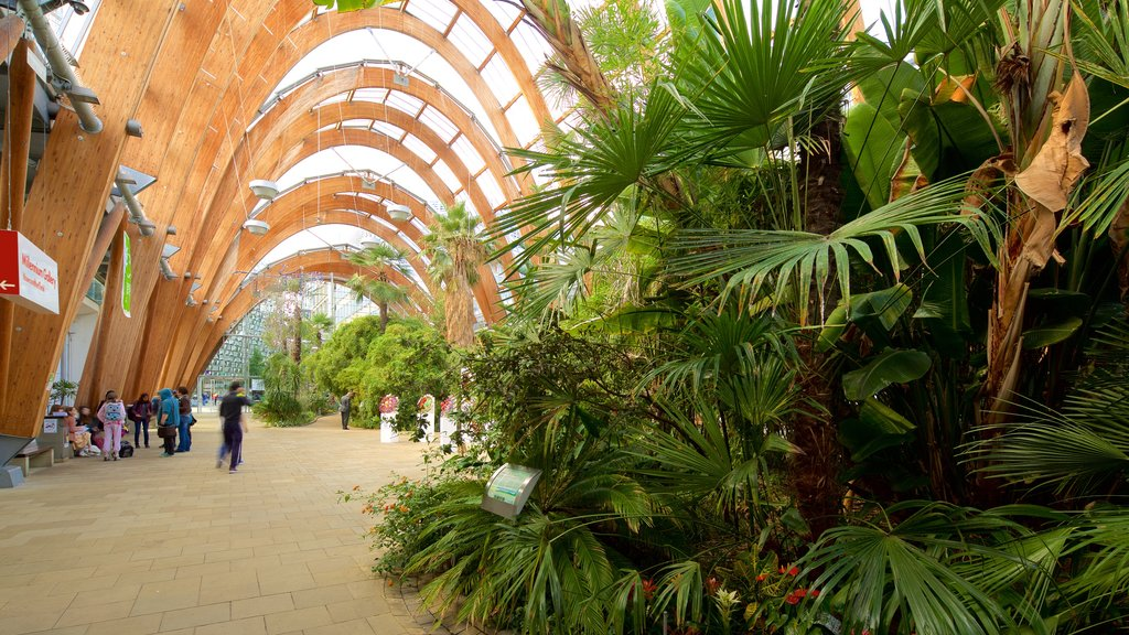 Sheffield City Centre featuring interior views and a garden