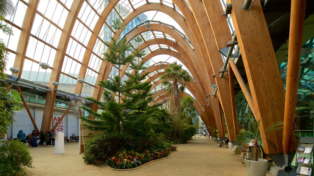 Sheffield Winter Garden showing a garden and interior views