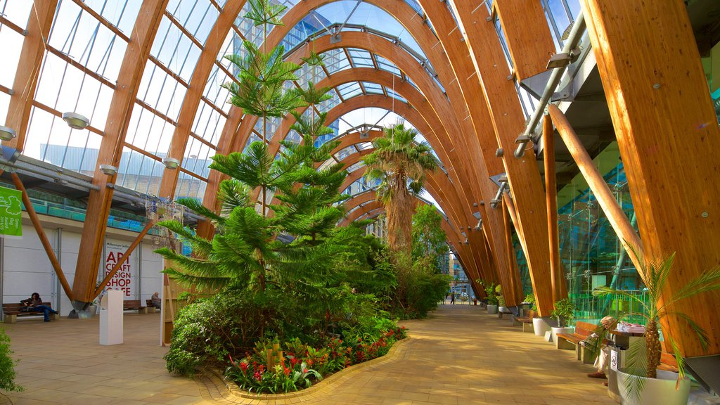 Sheffield Winter Garden featuring a park and interior views