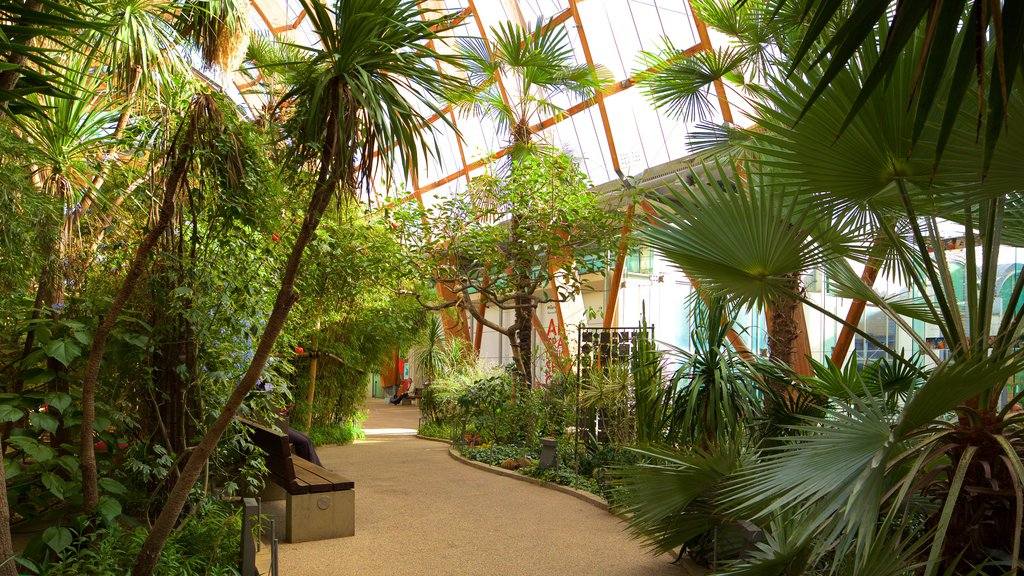 Sheffield Winter Garden featuring interior views and a park