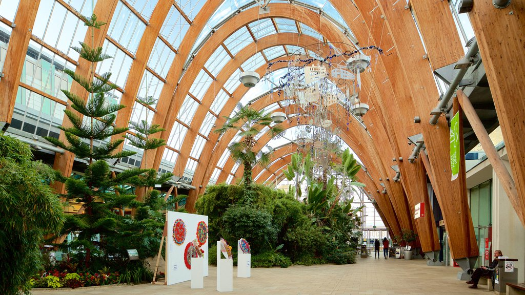 Sheffield Winter Garden featuring interior views, a park and art