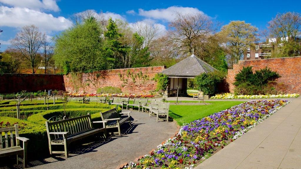 Roundhay Park que incluye un parque y flores