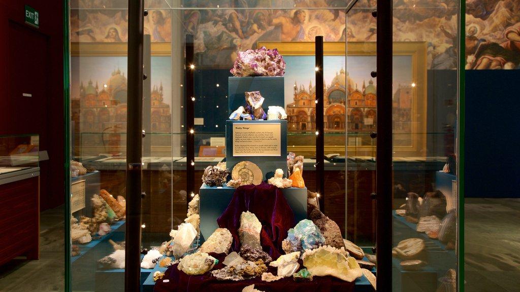 Millennium Gallery which includes interior views