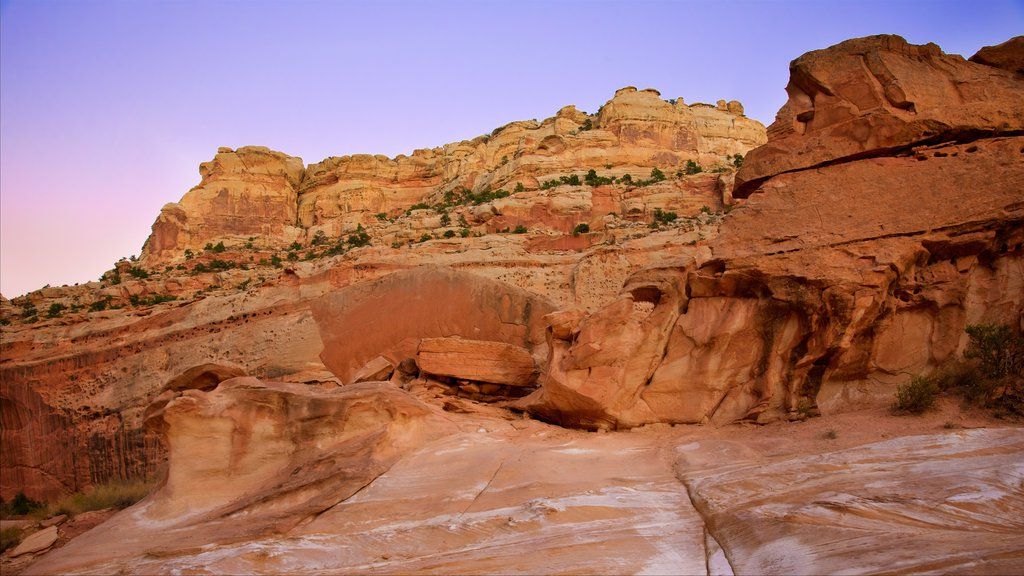 Capitol Reef National Park featuring desert views, a gorge or canyon and tranquil scenes