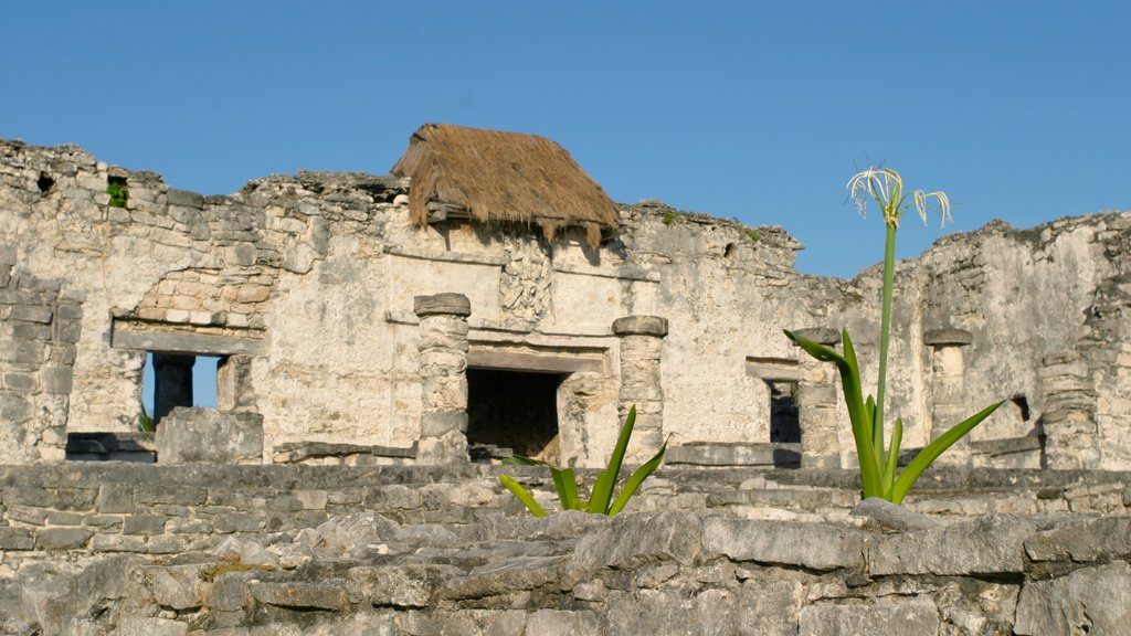 Tulum showing heritage elements and heritage architecture