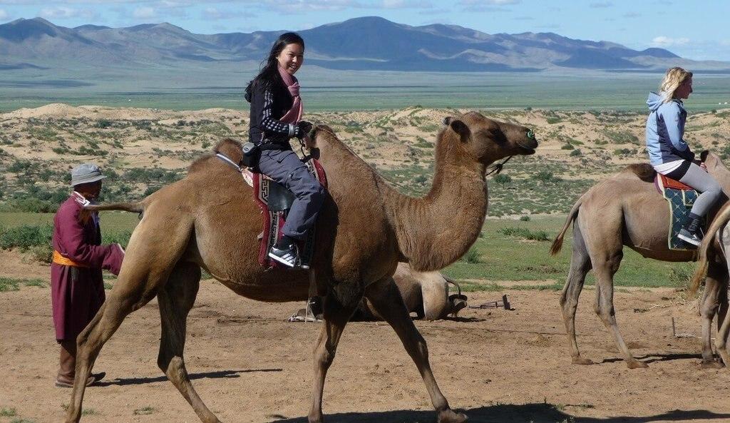 Kameeltocht in Mongolië