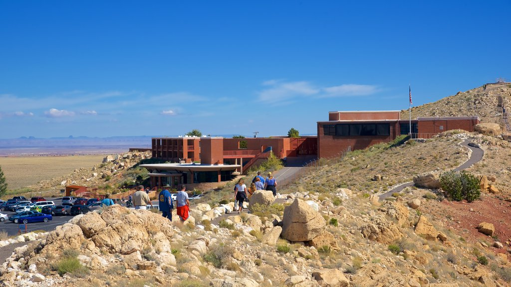 Meteor Crater featuring tranquil scenes and desert views as well as a small group of people