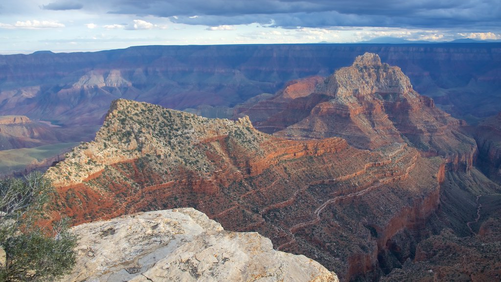 Cape Royal featuring desert views, tranquil scenes and a gorge or canyon