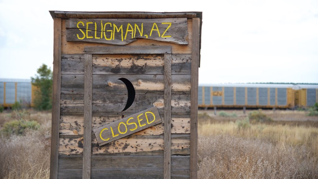 Seligman featuring signage