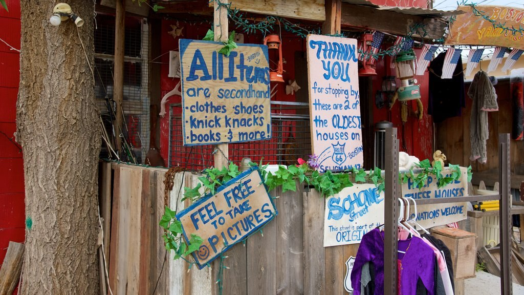 Seligman featuring signage and street scenes