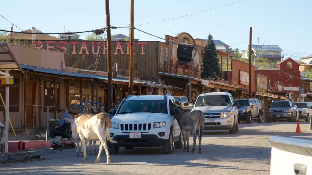 Oatman featuring land animals, vehicle touring and street scenes