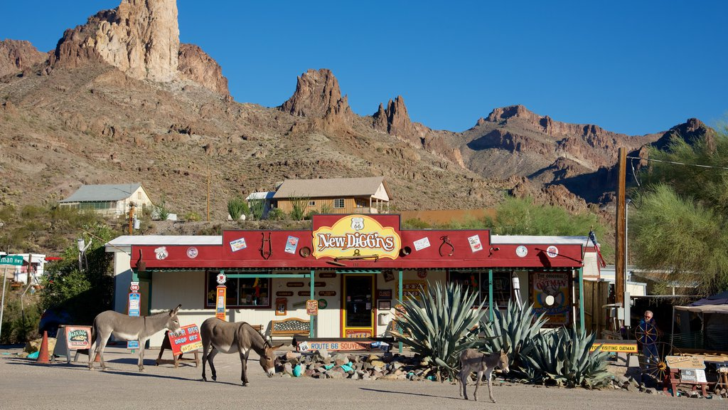 Oatman featuring land animals and street scenes