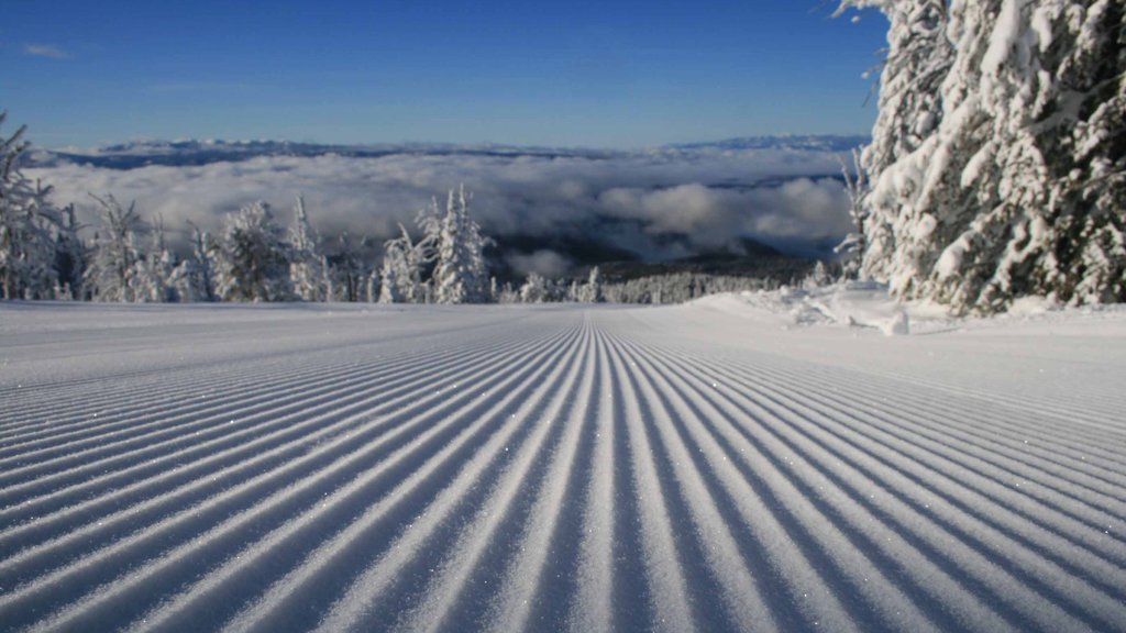 Brundage Mountain Ski Area featuring mist or fog and snow