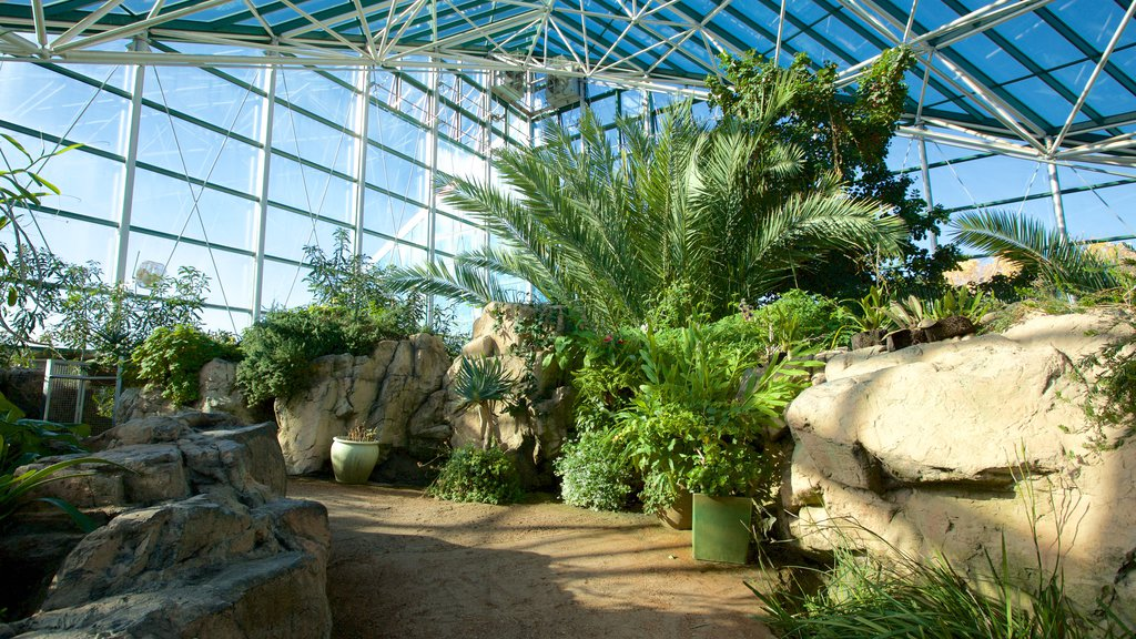 ABQ BioPark Botanic Garden which includes interior views and a park