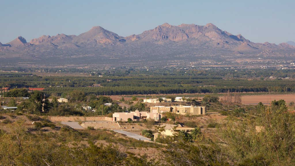 Las Cruces which includes landscape views and farmland