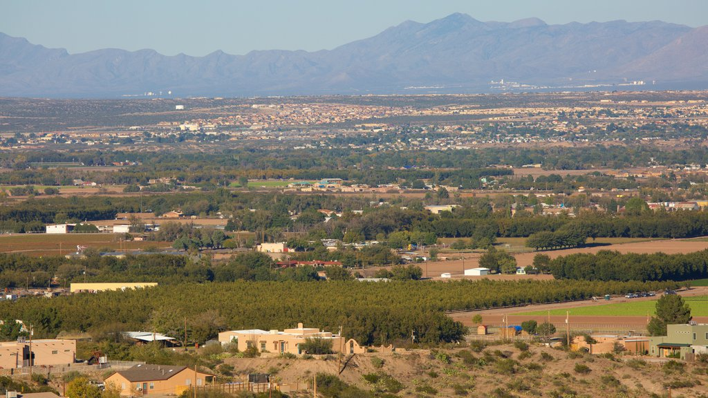 Las Cruces which includes farmland and landscape views