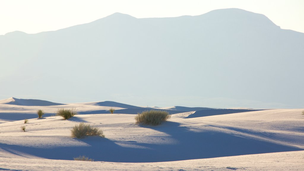 White Sands National Monument showing a beach