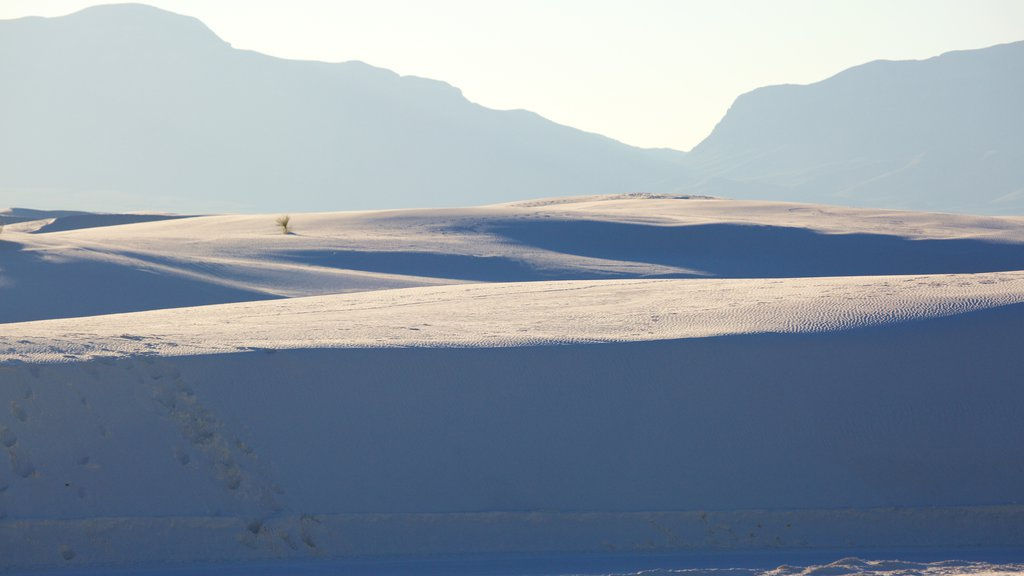 White Sands National Monument showing mountains and a sandy beach