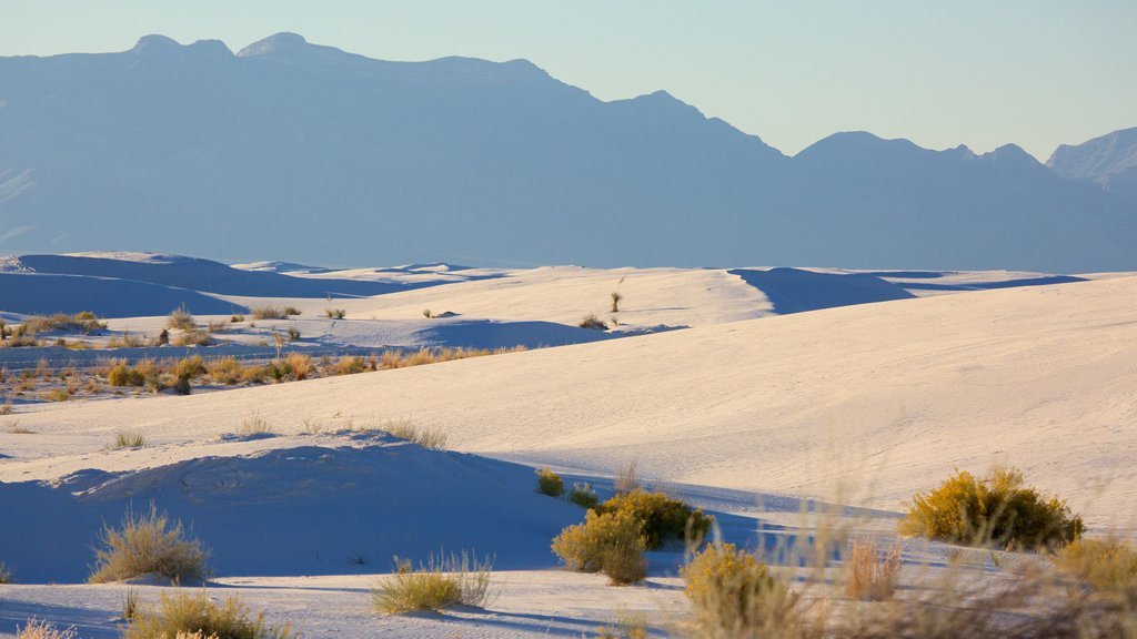 White Sands National Monument featuring tranquil scenes and a sandy beach