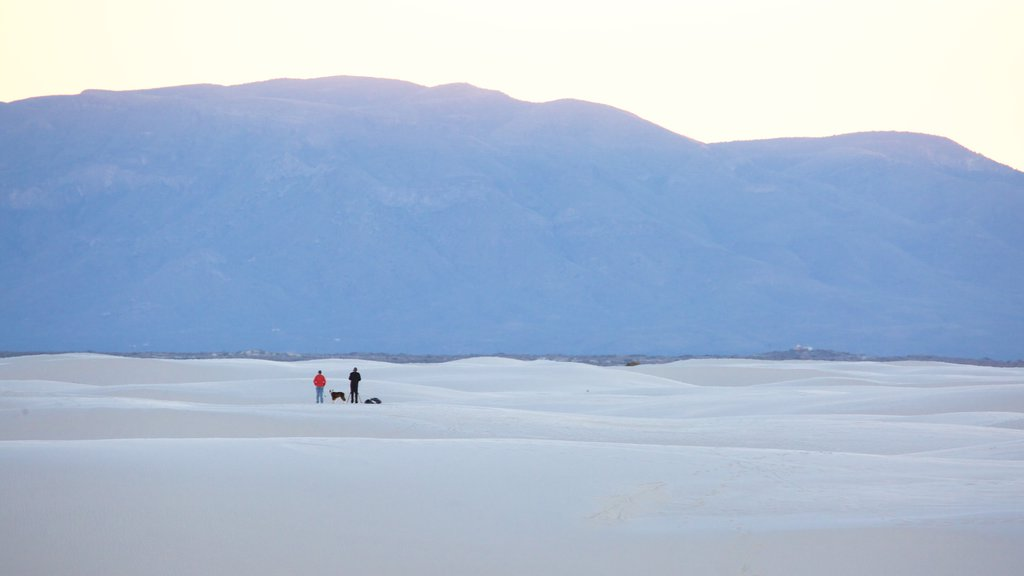 White Sands National Monument featuring mountains and a sandy beach