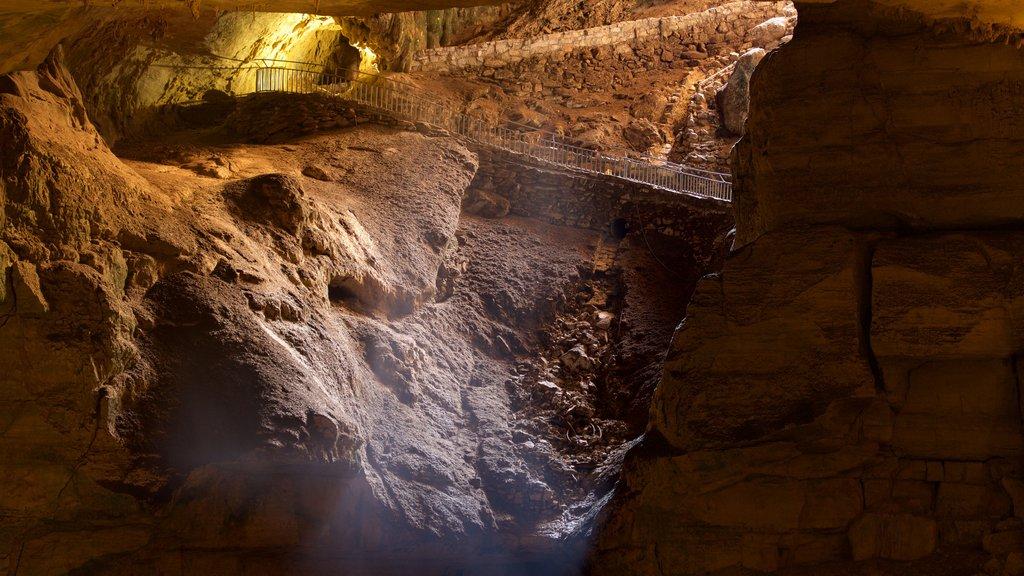 Carlsbad Caverns National Park showing caves