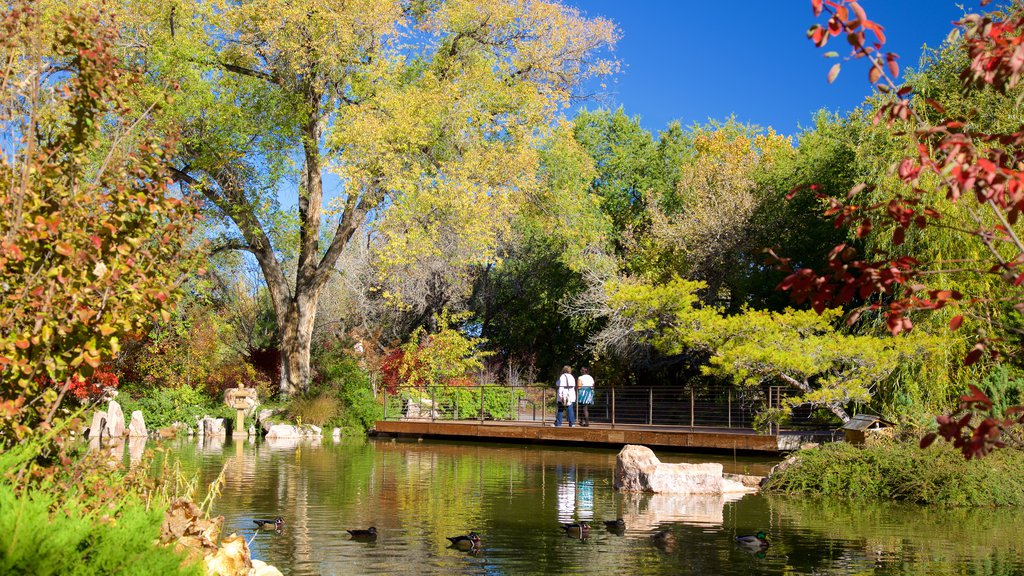 ABQ BioPark Botanic Garden which includes a pond and a park
