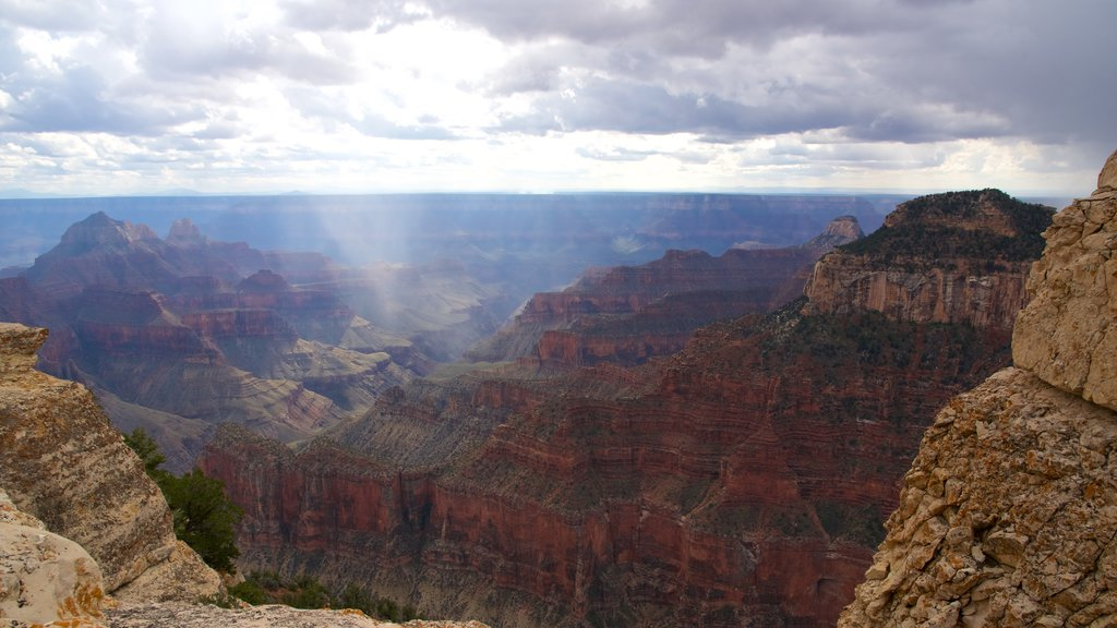 Bright Angel Trailhead featuring a gorge or canyon and tranquil scenes