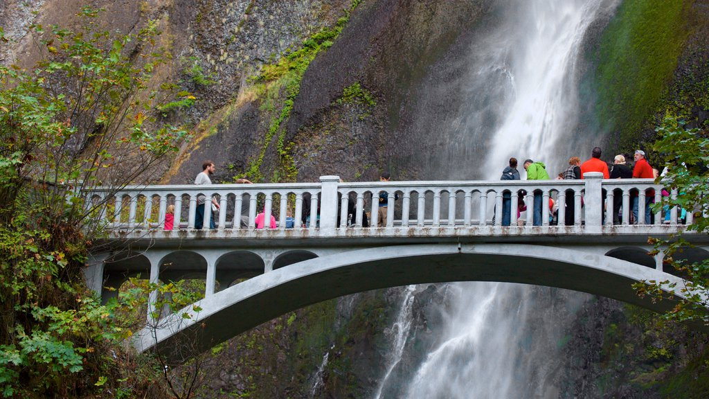 Multnomah Falls showing a bridge and a cascade