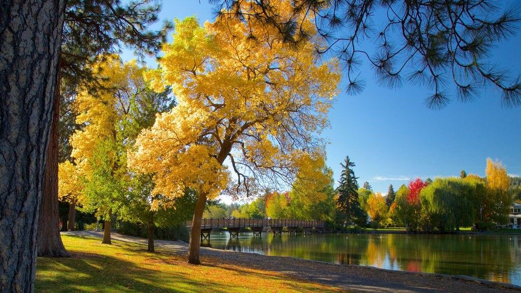 Drake Park mostrando los colores del otoño y un jardín