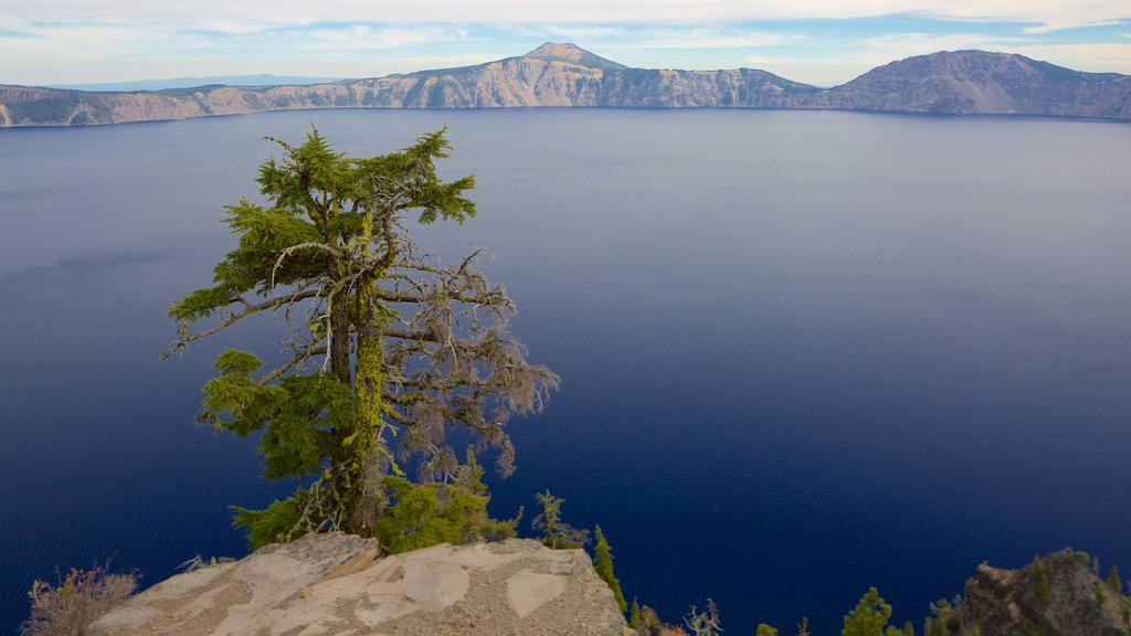 Crater Lake National Park showing a lake or waterhole
