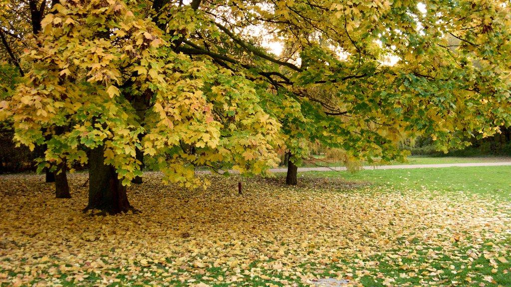 Tiergarten Soviet War Memorial featuring a park and autumn leaves