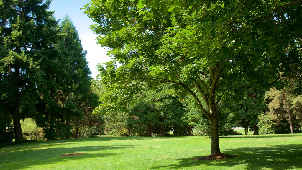 Bellevue showing a garden