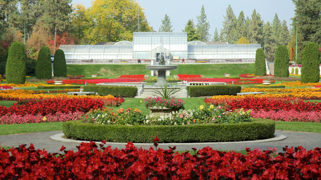 Manito Park showing a garden and flowers