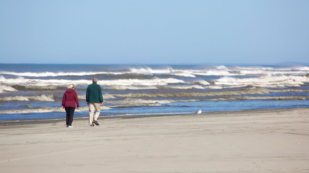 Ocean Shores Beach featuring a sandy beach and general coastal views as well as a small group of people
